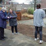 Vrijwilligers poten 1.000 tulpenbollen in binnentuin ouderencomplex Windsingel