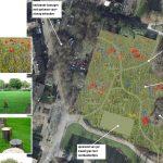 Botter-locatie krijgt tijdelijke invulling: vlindergras velden en voetbalveldje