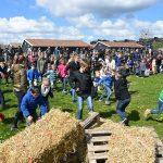 Paasfeest bij De Kleine Duiker: Honderden eieren verstopt in het weiland