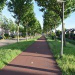 Scooterrijder veroorzaakt val van fietser aan Boerhaavelaan, te druk met telefoon om te stoppen