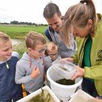 150 kinderen ontdekken de natuur tijdens de Zuidpolderdag 2017
