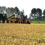Video 1992: Toen Carnisselande agrarisch was