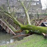 FOTO'S: Zware storm veroorzaakt grote en kleine schades in Barendrecht