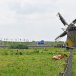 12 en 13 mei: Pendrechtse Molen geopend voor bezoek tijdens Nationale Molendagen