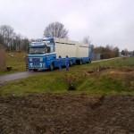 Dierenpolitie neemt paarden in beslag in Barendrecht