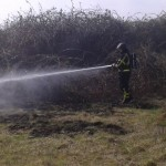 Opnieuw natuurbrandje langs Oude Maas, Achterzeedijk Barendrecht