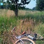 3 aanhoudingen: 15-jarige van fiets getrapt bij poging beroving Havenspoorpad, Barendrecht