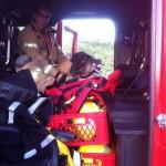 Schaap in brandweerauto terug naar kudde na duik in sloot Carnisse Baan, Barendrecht