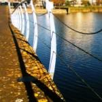 Staalkabels gestolen van gegolfde brug Gaatkensplas