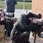 Vogelspotters komen op 'Oosterse Zwarte Roodstaart' af in de Riederbuurt