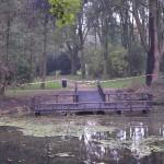 Steiger volledig in brand in park Buitenoord in Barendrecht