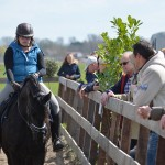Paarden Familiedag bij De Kleine Duiker in Barendrecht