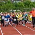 Scholenkampioenschappen hardlopen 2013 op sportpark de Bongerd in Barendrecht