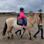 18 april: Paarden familiedag bij De Kleine Duiker in Barendrecht