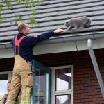 Holly van dak aan de Paardenburg gered door de brandweer (Barendrecht)