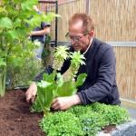 Robs Grote Tuinverbouwing bij de familie van Asperen in Barendrecht