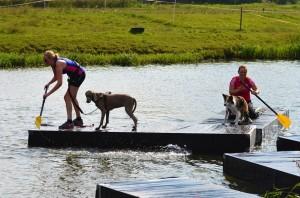Honderden deelnemers voor Dogsurvival bij De Kleine Duiker in Barendrecht