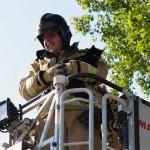 Brandweer helpt kat uit hoge boom langs de Voordijk
