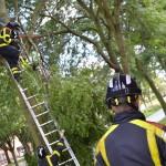 Brandweer verwijdert gevaarlijk loshangede tak aan de Donge in Barendrecht