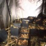 Hennepkwekerij met 300 planten ontdekt aan de Hazenburg in Barendrecht (Carnisselande)