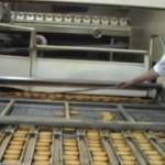 Video 1990: Opening uitbreiding Hooimeijerfabriek in Barendrecht