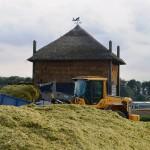 Herfstvakantie activiteit: Kinder knutselen in de hooimijt van de Kleine Duiker in Barendrecht