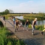 Skatenight: Langs de paarden dwars door de Zuidpolder, Barendrecht