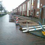 20 bomen gekapt in wijk Waterkant, aanleg plantenvakken voor nieuwe bomen