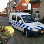 Inbrekers klimmen door vernielde heg bij woninginbraak Helfrichstraat
