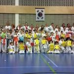 Veel geslaagden bij examens van karatevereniging Him Yong Gi