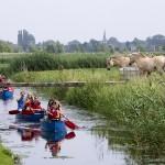 Ontdek de natuur in Barendrecht vanuit een kano