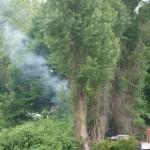 Brandje in struiken aan de Dorpsstraat-Oost / Buitenlandse Baan in Barendrecht