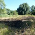Mogelijk brand aangestoken langs Oude Maas in Barendrecht