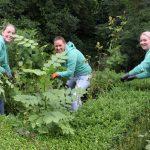 Present-vrijwilligers met groene vingers aan de slag bij Hospice de Reiziger