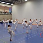 Geslaagde karate examens in sporthal de Riederpoort