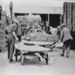 Video 1939: De tuinbouwveiling van Barendrecht en Omstreken