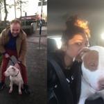 Hondje vermist na te zijn geschrokken van vuurwerk: teruggevonden bij vuurwerkwinkel