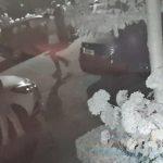 Video: Verdacht gerommel aan auto's aan Van Ravesteyndreef