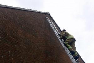 Brandweer helpt vogeltje tussen dakpannen vandaan aan de Paddeweg in Barendrecht