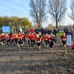 Rob Prooi Memorial Cross (2014, Kooiwalbos, Barendrecht)